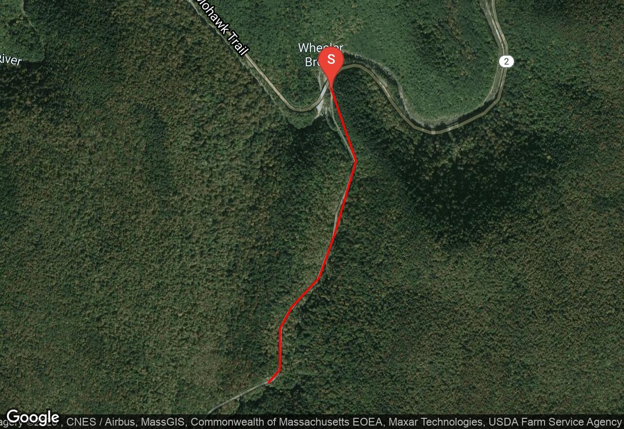 Mohawk Trail State Forest   Savoy, Massachusetts